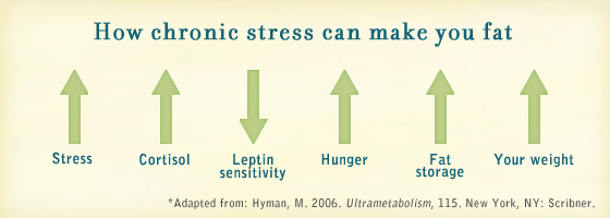 Stress Impedes Weight Loss